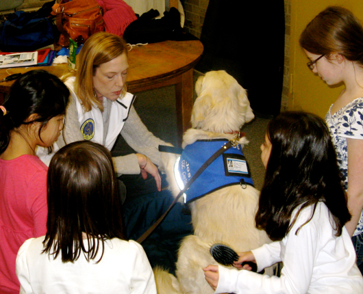 PS_Dog training programs schools3